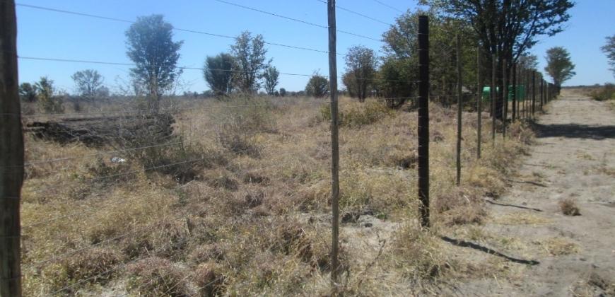 Farm perimeter