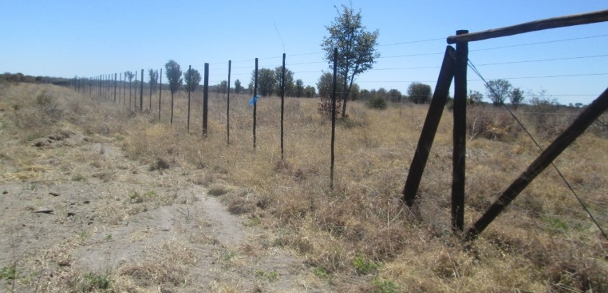 More views on fencing