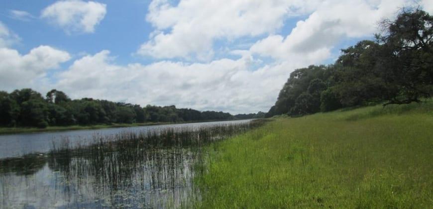 River view fom plot