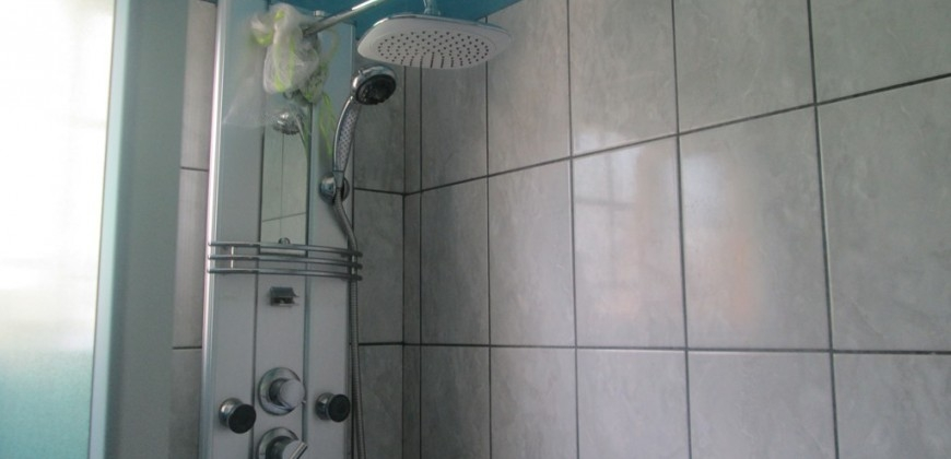Shower for the common bathroom