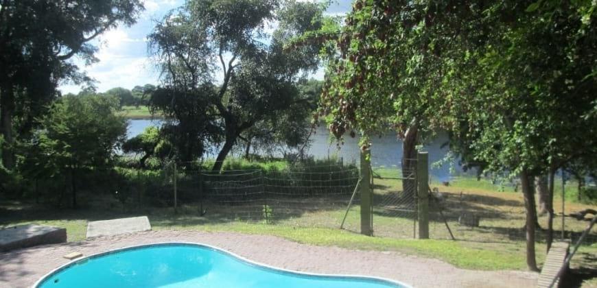 Swiiming pool/big trees surrounding the property