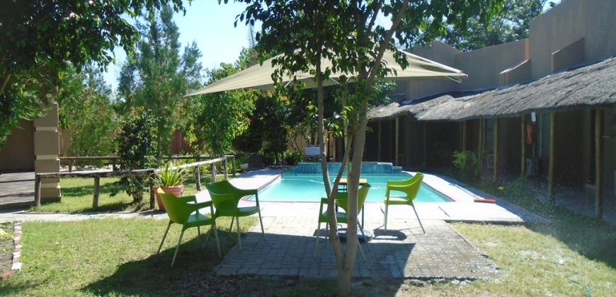 Swimming pool/garden