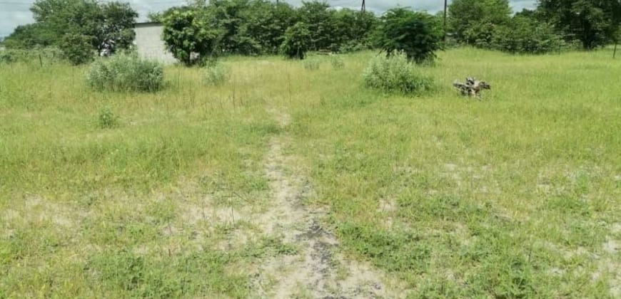 Plot/with ample space for more development