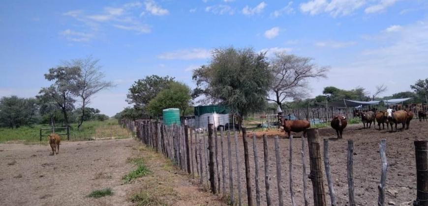 Cattle kraals/water reserviors